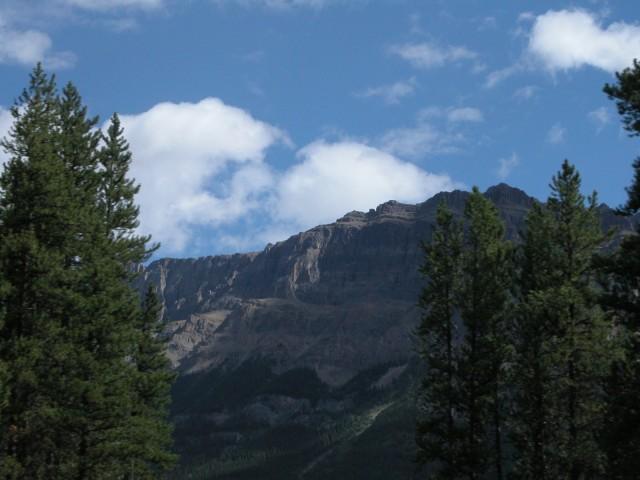 DSCN8915+Mountains+Trees+Banff+NP+Icefields+Parkway+Transit+To+Vanderhoof+BC